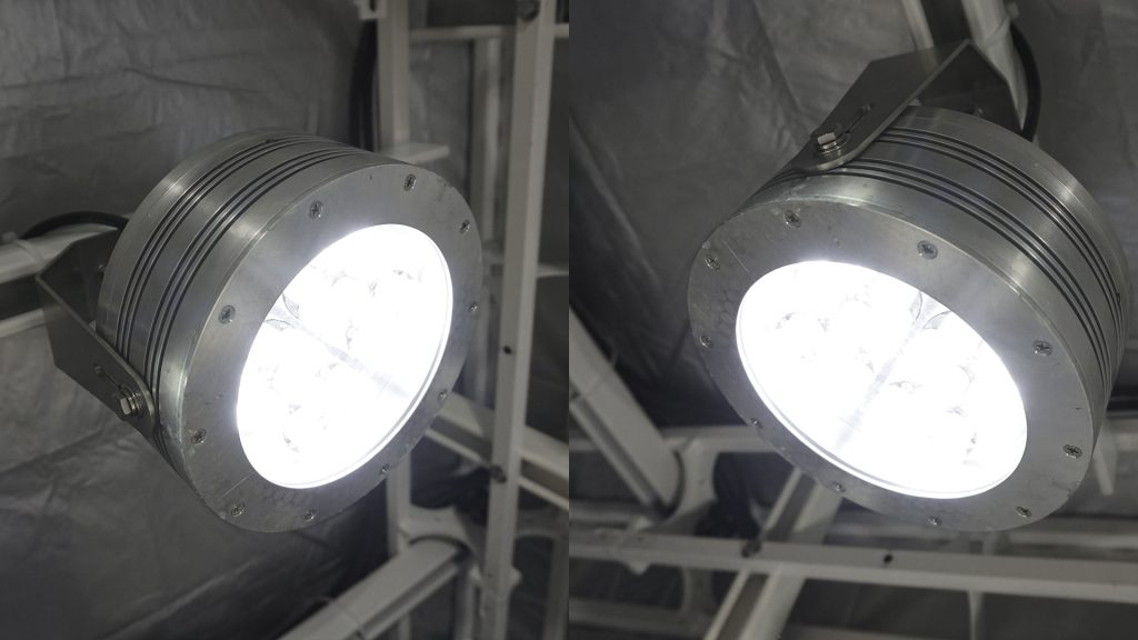Hazardous location class I div 2 (c1d2) certified Nemalux XCAN-DC Series industrial LED luminaire installed in industrial application