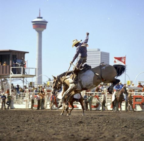 The Calgary Stampede is a world famous event that takes place annually in Calgary, Alberta, Canada, home to Nemalux Industrial Lighting's headquarters.